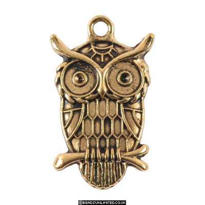 2 Steampunk Owl Charms